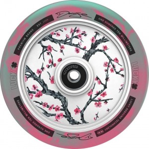 Lucky Darcy Cherry-Evans Wheel